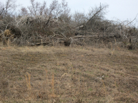 Leased Two Acres 2013 2
