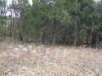 Leased Two Acres 2013 1